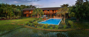 Luxury Villa Rice Fields Chiang Rai Northern Thailand