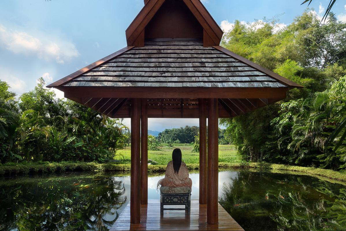 Koi Pond Chiang Rai Northern Thailand