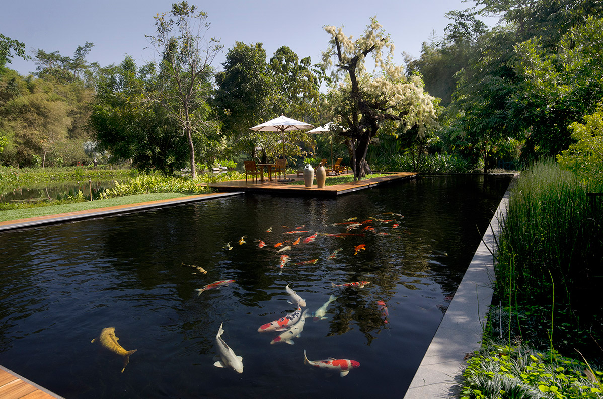 Private Koi Pond Luxury Villa Chiang Rai Northern Thailand
