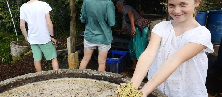 Chiang Rai Charlie's Coffee Plantation Thailand