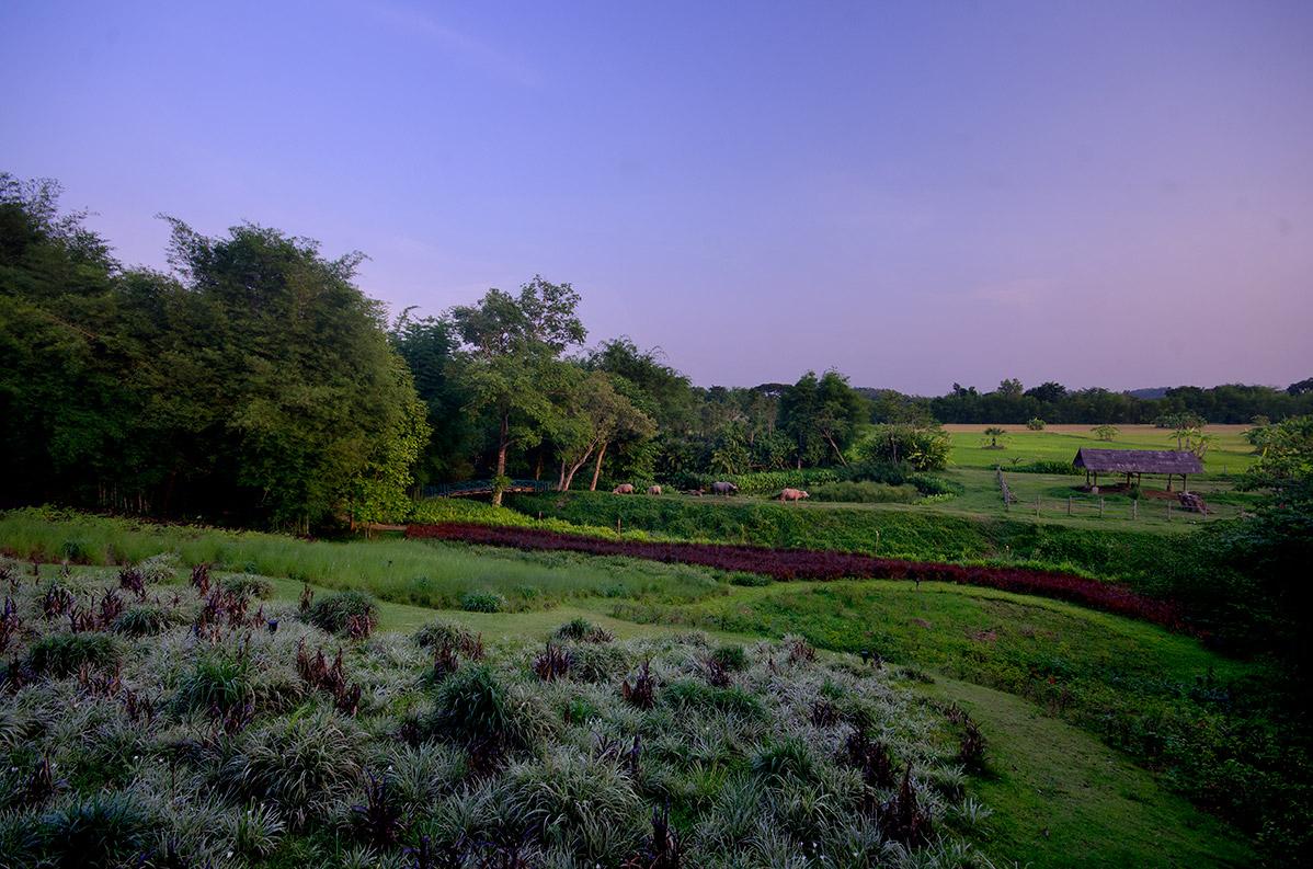Luxury Villa Scenery Landscape Chiang Rai Northern Thailand